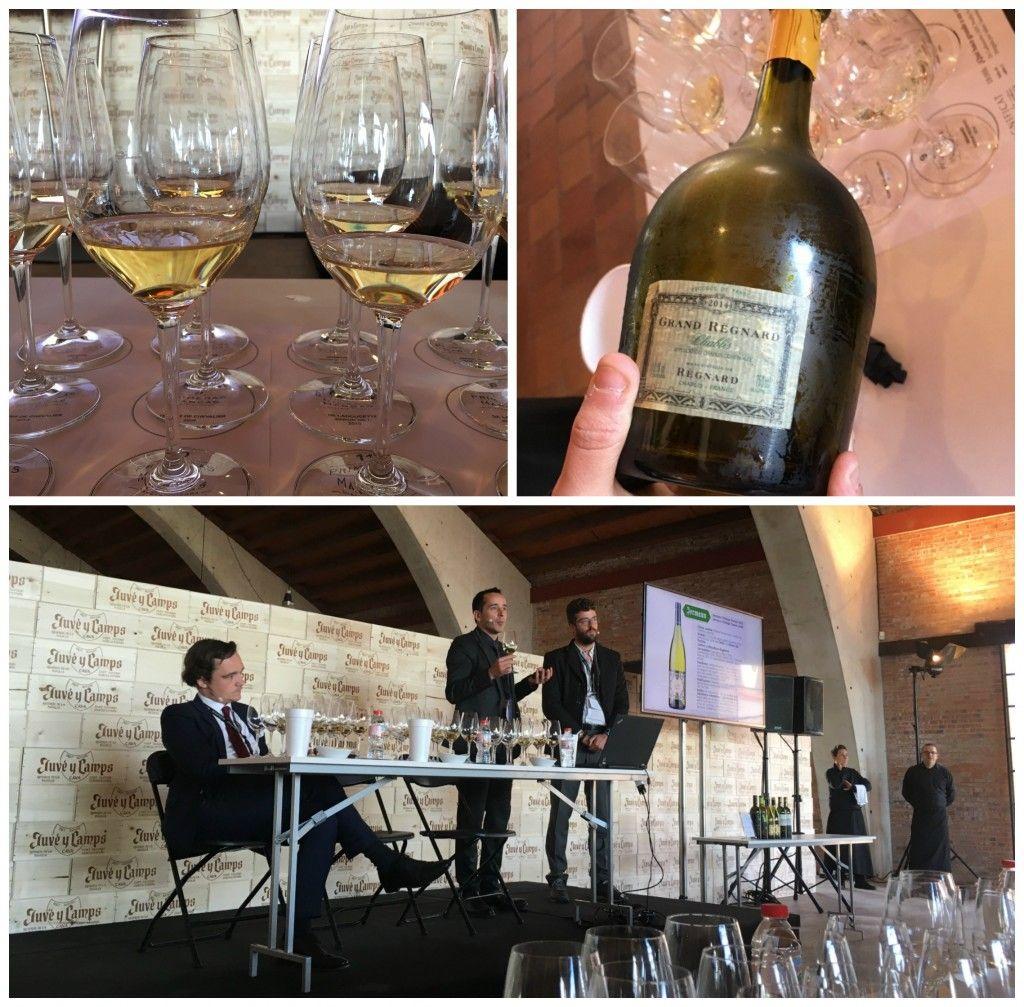 magnificat_blog vinos