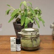 Productos orgánicos para tu melena