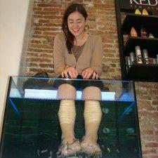 Ictioterapia: Fish Pedicure