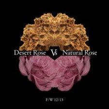 Montse Liarte y su «lucha» de rosas