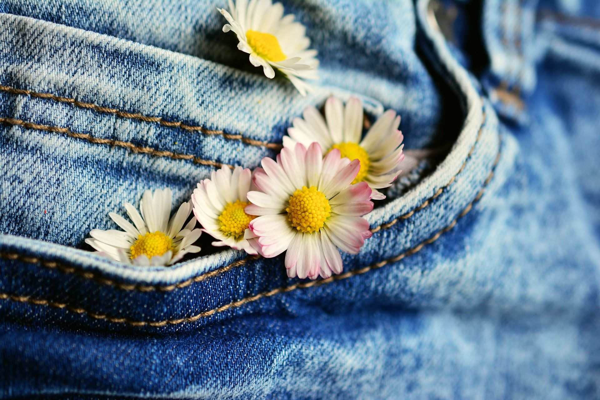 Comprar el jean perfecto